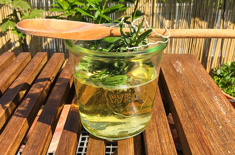 Waldmeister aromatisiert die Maibowle