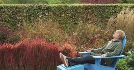 gräsergarten gestalten