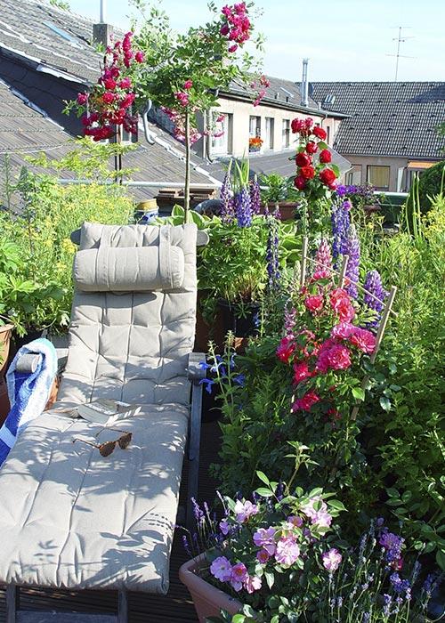 Dachgärten und -terrassen entspannt in der Sonne liegen