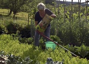 Mischkulturen Blumen und Gemüse