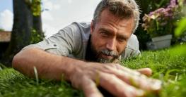 Zum Streicheln schön: Ein gut gepflegter Rasen ohne Unkraut ist ein Genuss für alle Sinne