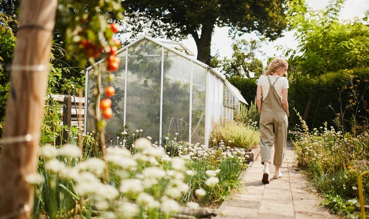 Spaziergang im Gemüsegarten am Gewächshaus vorbei