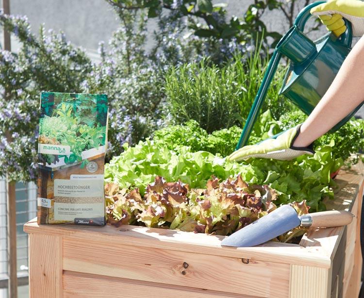 Hobbygärtner setzen auf organische Dünger