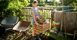 In jedem Anfang wohnt ein Zauber: neue Pflanzen verschönern sofort den Garten